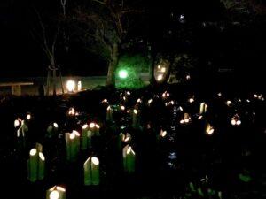 京都花灯路の様子